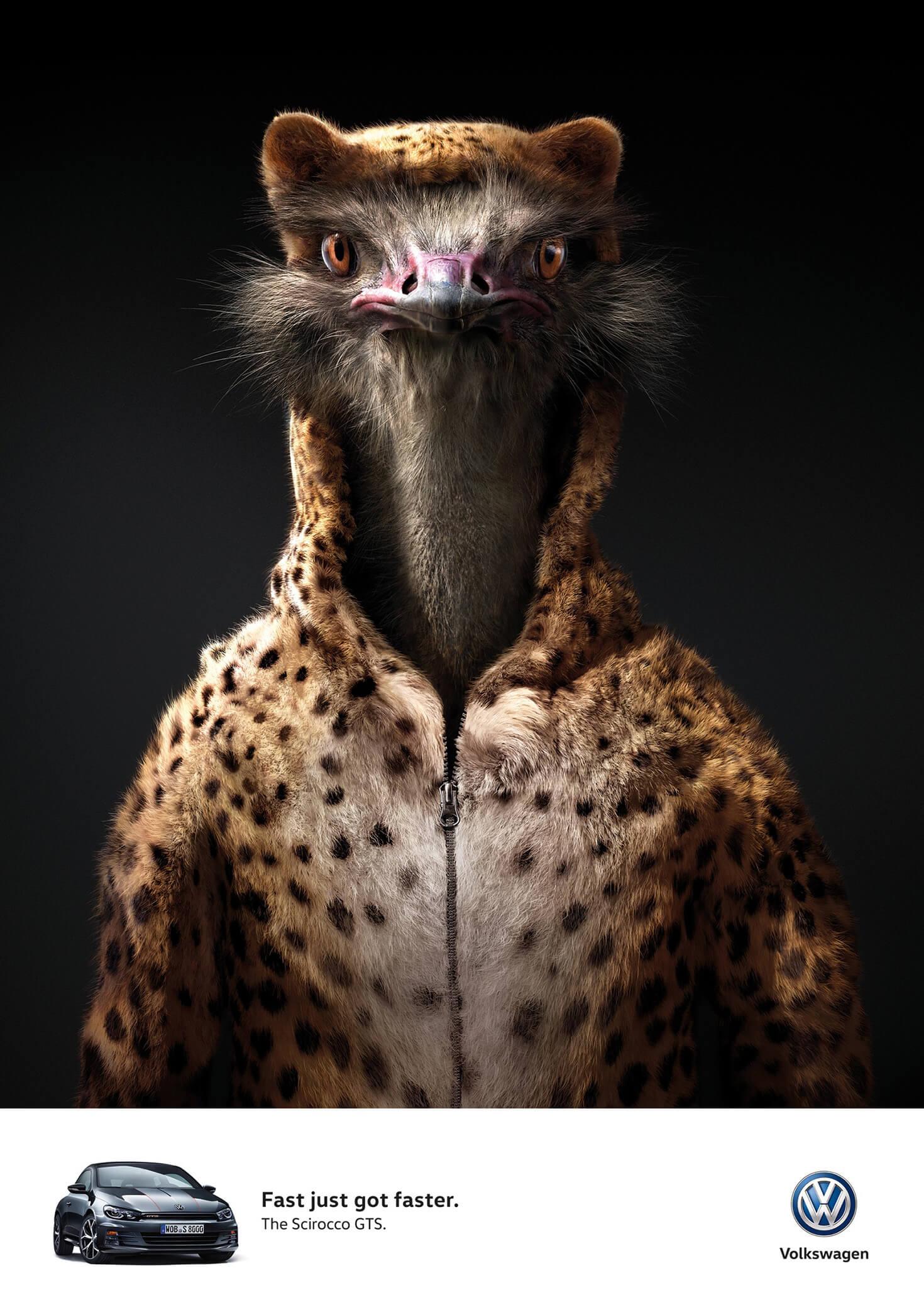 aotw_rgb_ostrich_en_aotw
